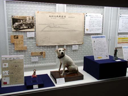 timatima-museum.jpg