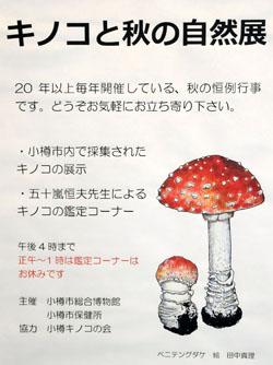 mushroomjudge.jpg