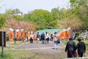syoukonsai2.jpg
