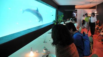 aqua-cafe2.jpg