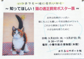 catposter2.jpg